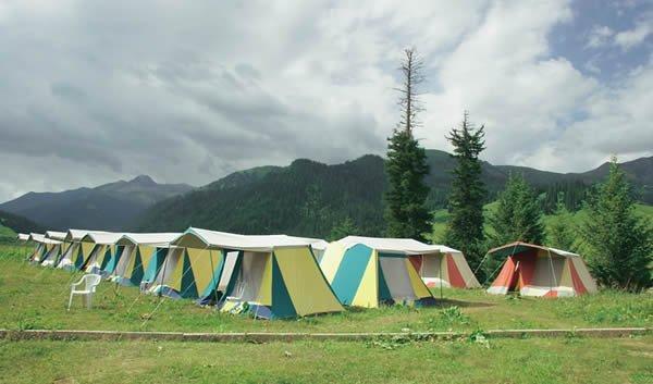 Палаточный лесной лагерь