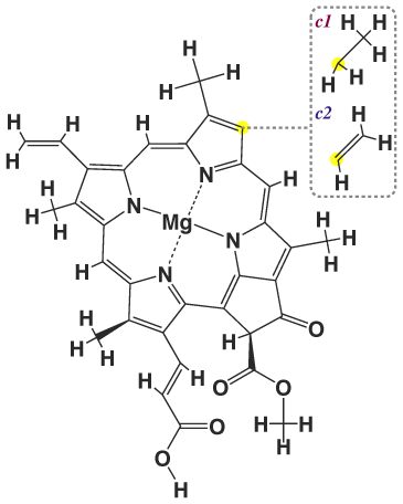 Структура хлорофилла С1 и С2