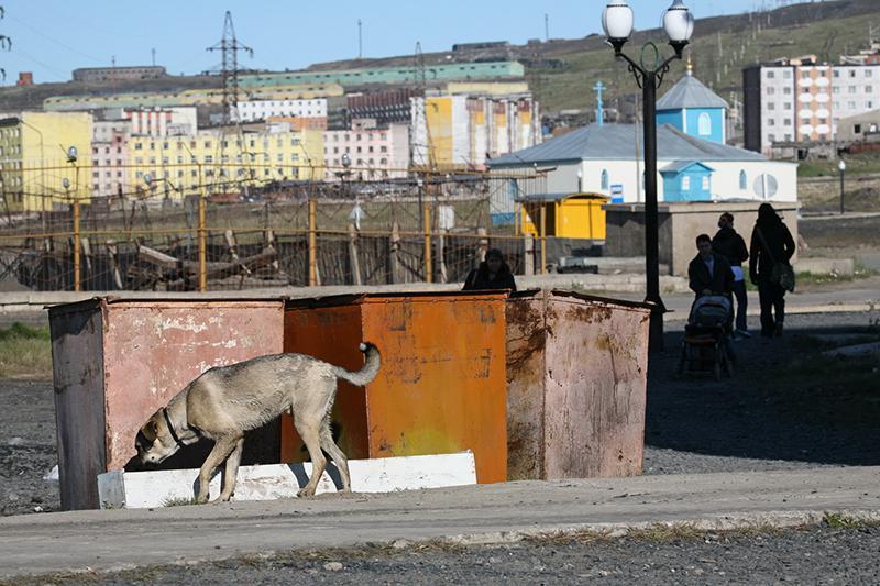знакомства города чехов intitle forum